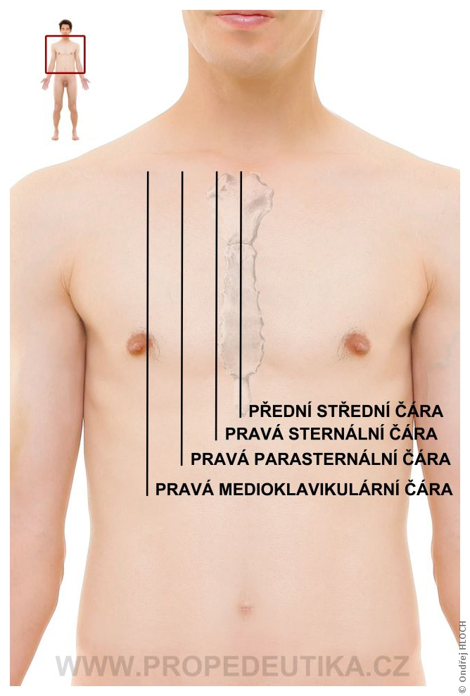 hrudnik_front_orientacni_cary
