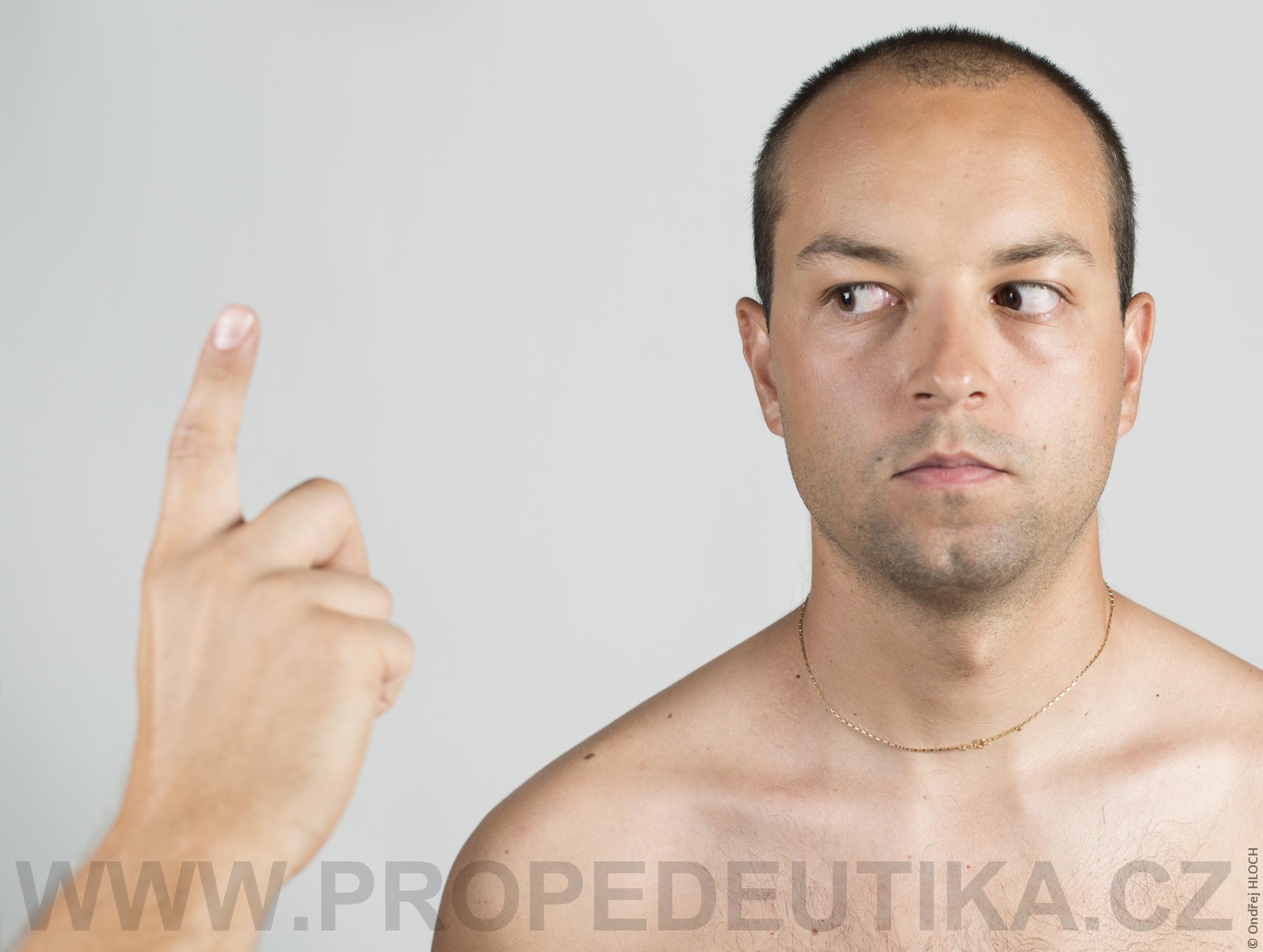 okohybne_vpravo_full