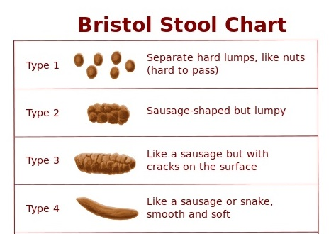 Bristol Stool ChartKyle Thompson