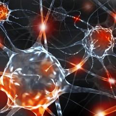 Neurologické minimum