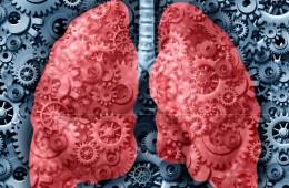 Laboratorní vyšetření respirač.sys