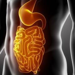 Příznaky chorob gastrointestinálních