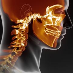 Vyšetření hlavy a krku